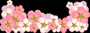 Flowerses (part 2) (10).1